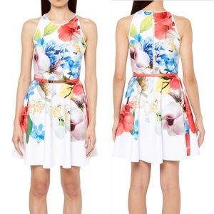 Ted Baker | Secil Forget Me Not Floral Print Dress